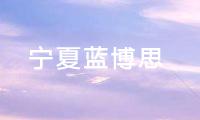 宁夏蓝博思化学技术有限公司